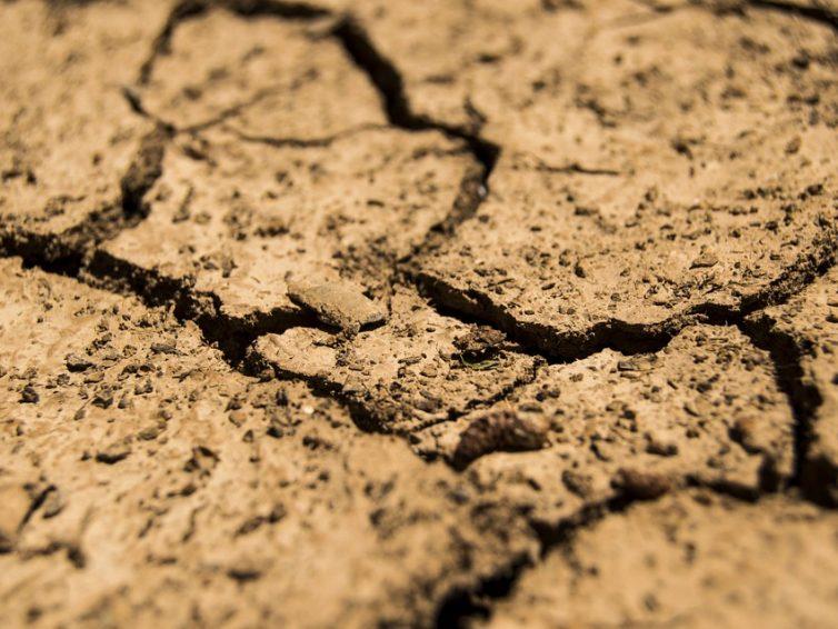 Anpassung an klimatische Fakten